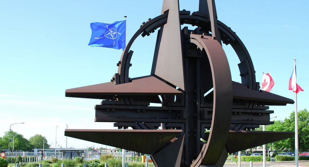 Senior US administration official said that Ukraine's membership in NATO is not being considered by the alliance.