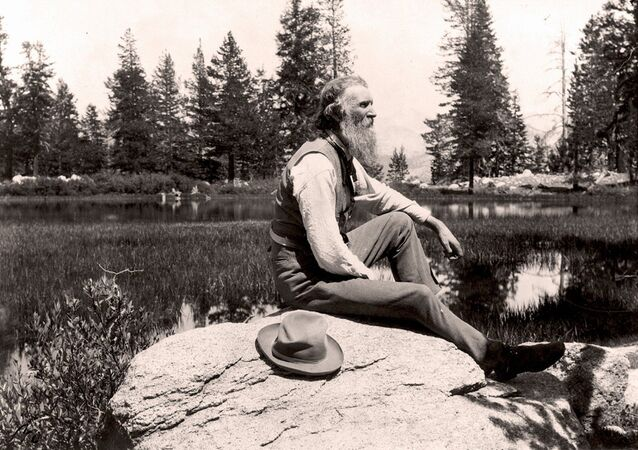 John Muir (1838-1914) Scottish-born American naturalist, engineer, writer and pioneer of conservation