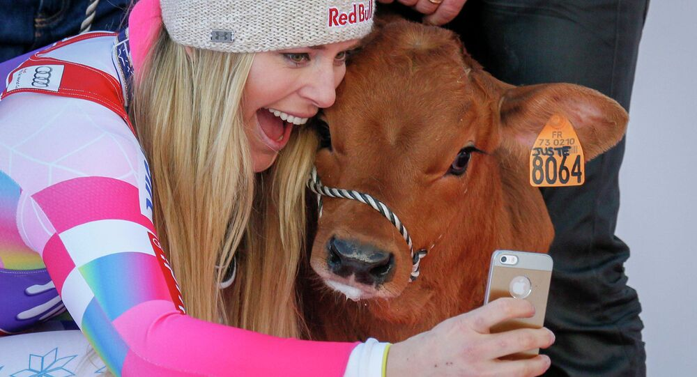 Lindsey Vonn of the U.S. takes a selfie with a cow she won as a prize after finishing first in the women's World Cup Downhill skiing race