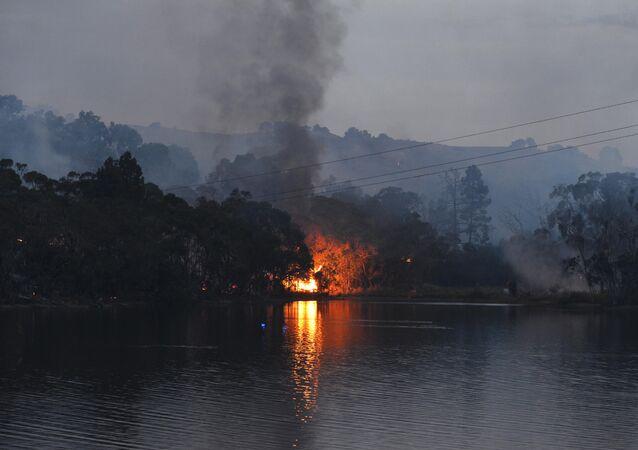 A bushfire burns through scrub