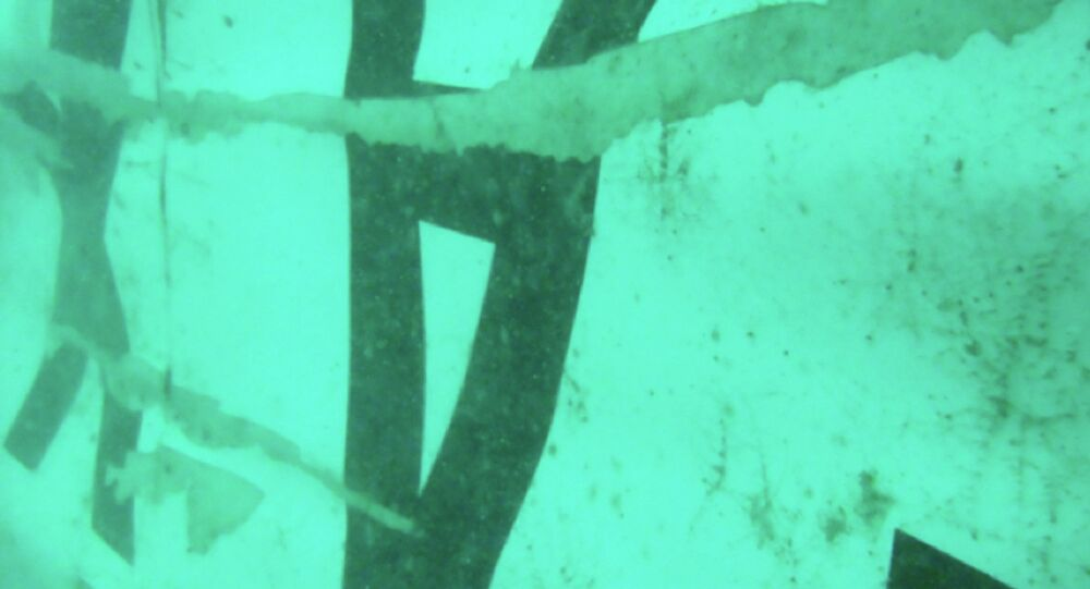 The part of the wreckage that BASARNAS identified as of the ill-fated AirAsia Flight 8501 is seen in the waters of the Java Sea, Indonesia
