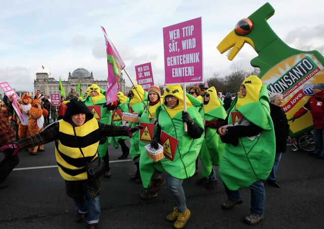 German farmers and consumer rights activists perform as the take part in a march to protest against the Transatlantic Trade and Investment Partnership (TTIP), mass husbandry and genetic engineering in front of the Reichtsgas building Berlin, January 17, 2015