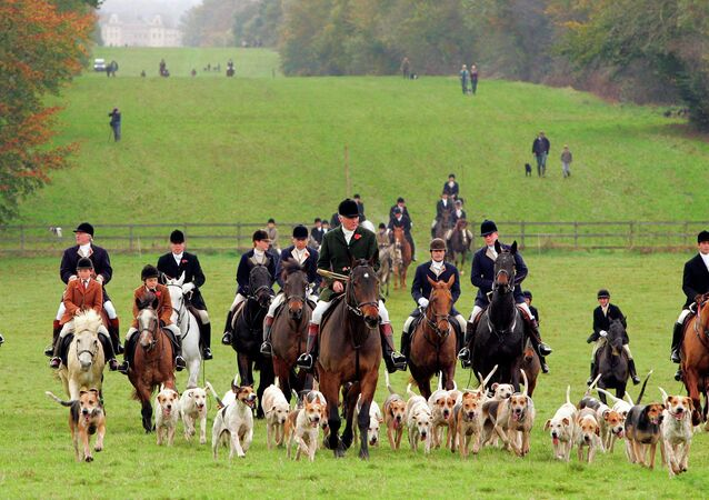 The UK government may abolish a law dating from the medieval era that enables British lords to use private property located within their territories for hunting