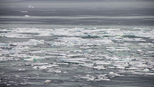Arctic. Archive - Sputnik International