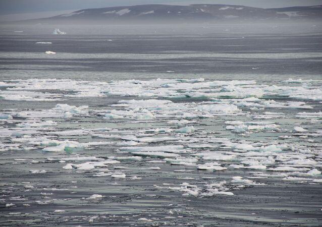 Arctic. Archive