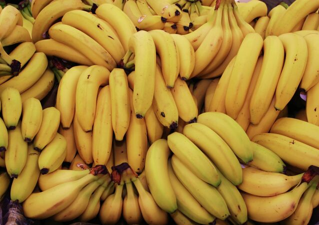 Russia is getting new supplies of bananas from Mexico