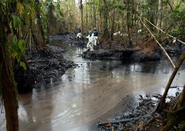 Chevron has been awarded a dubious Lifetime Achievement award for its environmental record.