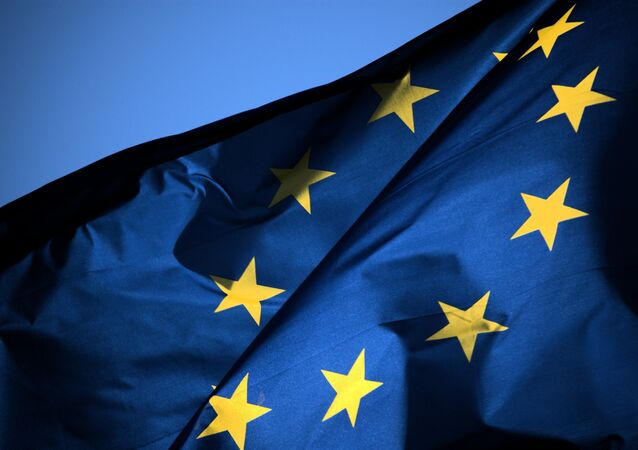 EU member foreign ministry officials stepped out against Washington's plans to provide weapons to Ukraine.