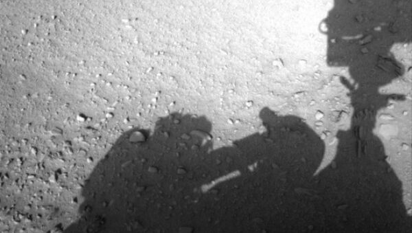 This image is believed to have captured the shadow of human shaped workman on Mars fixing the Rover - Sputnik International