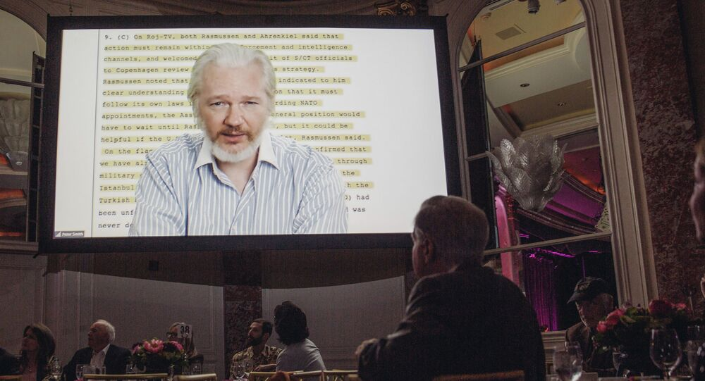 Julian Assange speaks remotely via a live feed at The 24th Annual PEN Center USA Literary Awards Festival at The Beverly Wilshire Hotel on Tuesday, November 11, 2014, in Beverly Hills, Calif
