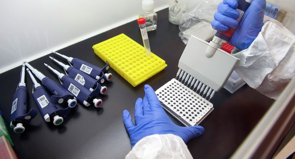 Russia could start testing three out of its four experimental Ebola vaccines on primates in March