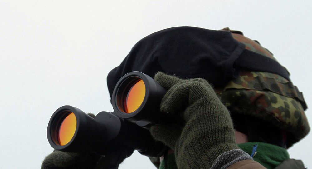 Dutch Experts Detect No Russian Military Activities in Rostov Region