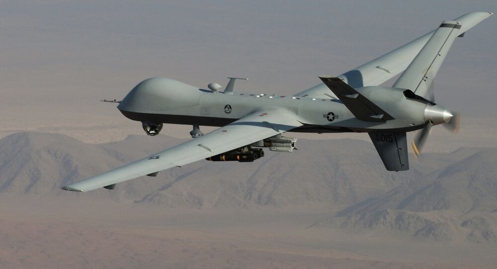 US Air Force, an MQ-9 Reaper
