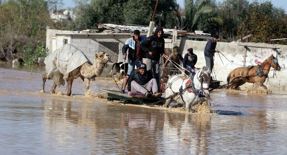 Palestinians ride horse carts as they evacuate their animals in the village of Al-Moghraga after it was flooded by rain water, near central Gaza Strip February 22, 2015.