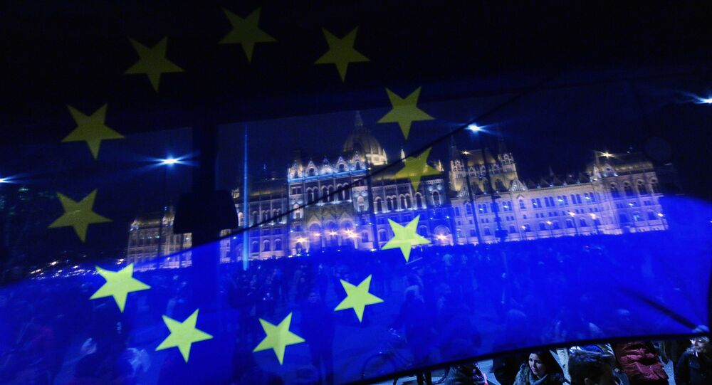 A flag of the European Union (EU) flutters in front of the Hungarian parliament during a demonstration against the Hungarian government's plan to nationalise private pension funds in Budapest downtown