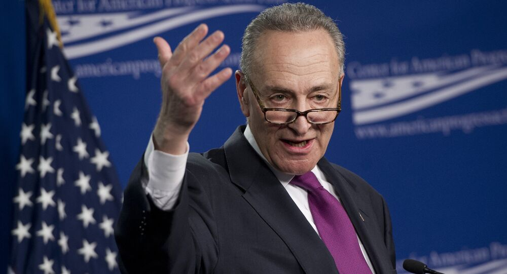US Democratic Senator Chuck Schumer of New York during a speech at the Center for American Progress (CAP) in Washington, DC, 23 January, 2014