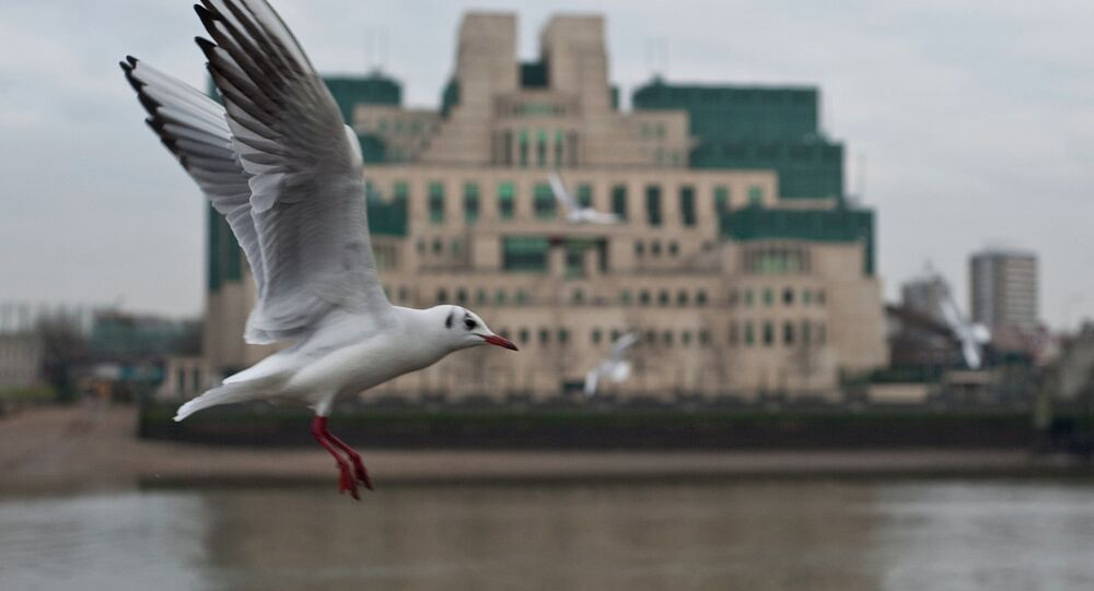 Gull flying past the SIS (MI6) building in Vauxhall