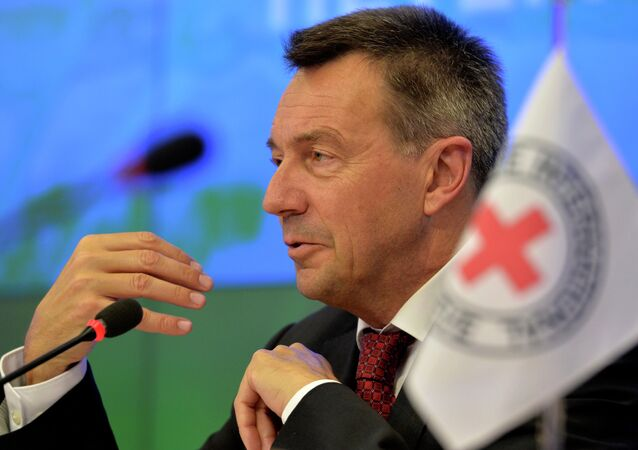 President of the International Committee of the Red Cross (ICRC) Peter Maurer speaks during a press conference in Moscow on February 24, 2015