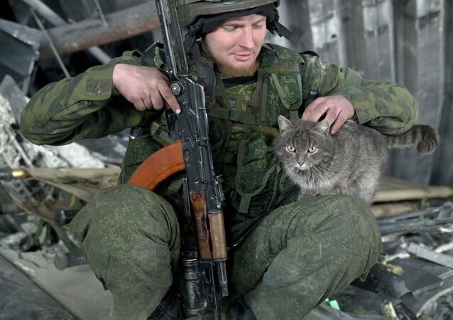 A Russian independence supporter pets a cat inside the destroyed building of the airport, outside Donetsk, Ukraine, Wednesday, Feb. 25, 2015