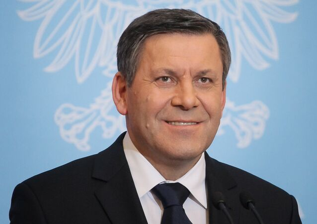 Polish Deputy Prime Minister Janusz Piechocinski told Reuters news agency on Tuesday that he is disappointed with Ukraine's failure to make headway in establishing a democratic political system, adding that the country's economic collapse threatens Poland's security.