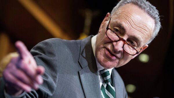 Senator Charles Schumer (D-NY) speaks after a vote on legislation for funding the Department of Homeland Security on Capitol Hill in Washington March 2, 2015 - Sputnik International