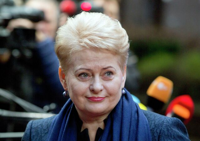 Following a hacker attack earlier this week that revealed Lithuania's alleged plans to annex Russia's westernmost Kaliningrad Region, Lithuanian President Dalia Grybauskaite urged to strengthen the level of cybersecurity within the country's government agencies, Baltic news portal Delfi reported.