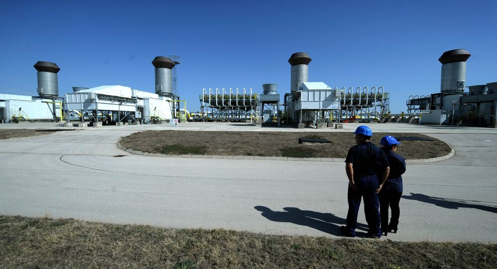 Employees of the state-owned storage and transmission operator Bulgartransgas stand on September 30, 2012 in front of a gas compressor station near the town of Provadia, some 410 kms east of capital Sofia