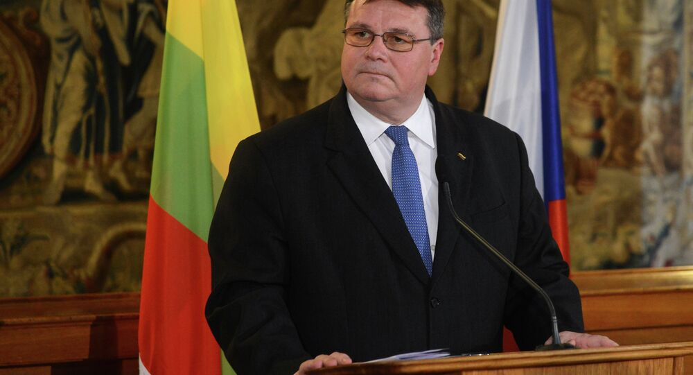 Lithuanian Foreign Minister Linas Linkevicius and his Czech counterpart (not in picture) give a joint press conference