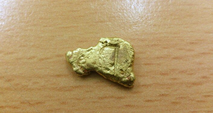 Brown came home with a 2.7 kilogram gold nugget, worth over $100,000.