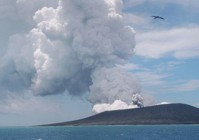 This view taken on January 17, 2015 from a boat at sea shows a frigate bird (C) flying on the thermals from the new vent as steam and gas rise from the eruption of a volcano, some 65 kilometres (40 miles) northwest of the South Pacific nation Tonga's capital Nuku'alofa