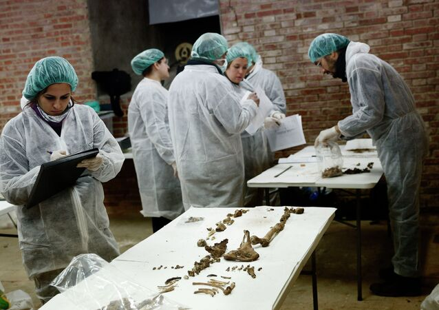 Researchers announced on Thursday that they found two skeletons that could belong to the renowned author of Don Quixote, Miguel Cervantes, and his wife, Catalina de Salazar