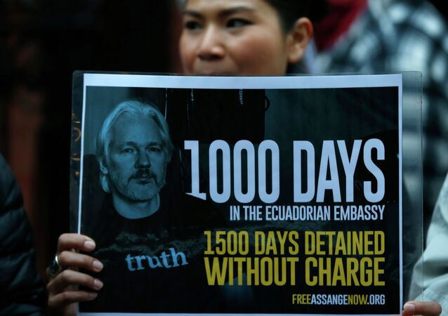 The prosecutor in charge of Julian Assange's case in Sweden has disgraced the country and should be replaced, according to another, former, prosecutor who wrote a scathing critique in a major Swedish daily.