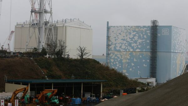 A building covering the Unit 1 reactor (L) is removed by a crane at the Fukushima Dai-ichi nuclear power plant in Okuma, Fukushima Prefecture, northeastern Japan on November 12, 2014 - Sputnik International