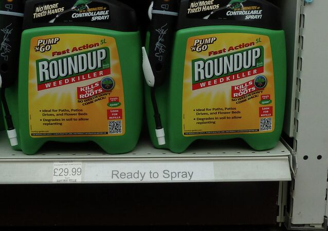 Monsanto's Roundup weedkiller contains the active chemical glyphosate, which the World Health organization has labeled a probable carcinogen.