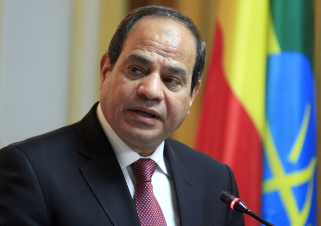 Egyptian President Abdel Fattah al-Sisi addresses a news conference after meeting Ethiopian Prime Minister Hailemariam Desalegn in Ethiopia's capital Addis Ababa, March 24, 2015