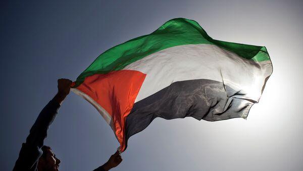 A Palestinian demonstrator waves a Palestinian flag. - Sputnik International