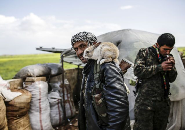A Kurdish fighter poses with a rabbit on the outskirts of the Syrian town of Kobane, also known as Ain al-Arab