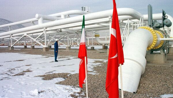 An Iranian worker stands in front of gas pipelines next to the flags of Turkey (R) and Iran - Sputnik International