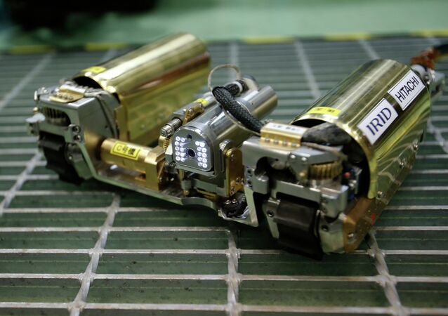 The snake-like robot, developed by Japanese electronics giant Hitachi and its nuclear affiliate Hitachi-GE Nuclear Energy