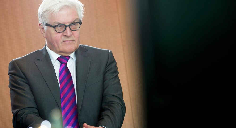German Foreign Minister Frank-Walter Steinmeier attends the cabinet meeting in Berlin
