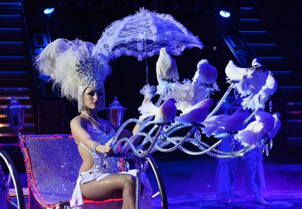 Where Magic Meets Reality: History of Circus