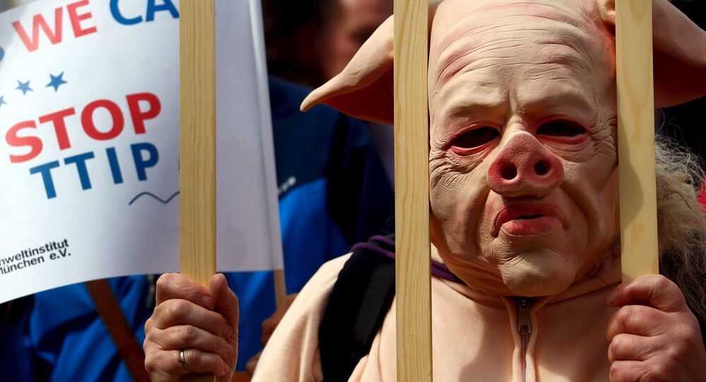 People dressed in costumes take part in a demonstration against the Transatlantic Trade and Investment Partnership (TTIP), a proposed free trade agreement between the European Union and the United States, in Munich April 18, 2015