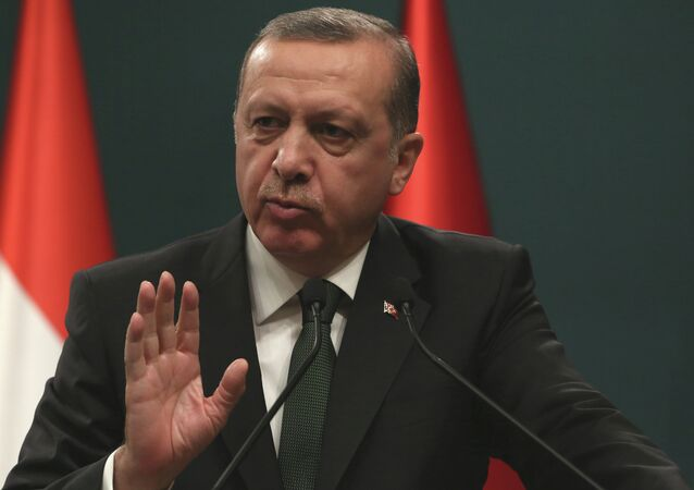 Turkish President Recep Tayyip Erdogan has hit out at the Islamic State group, which he said was a virus designed to destroy the Muslim community
