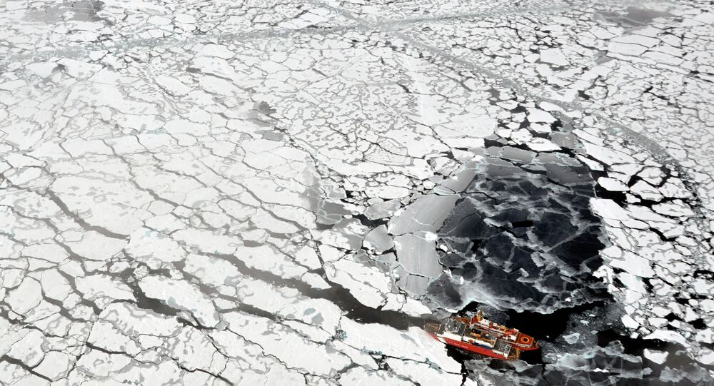 Russian drones will be deployed in the Arctic and along the Northern Sea Route starting May 1 to monitor the climate situation and the deterioration of Arctic ice, as well as to aid in navigation and search and rescue missions.