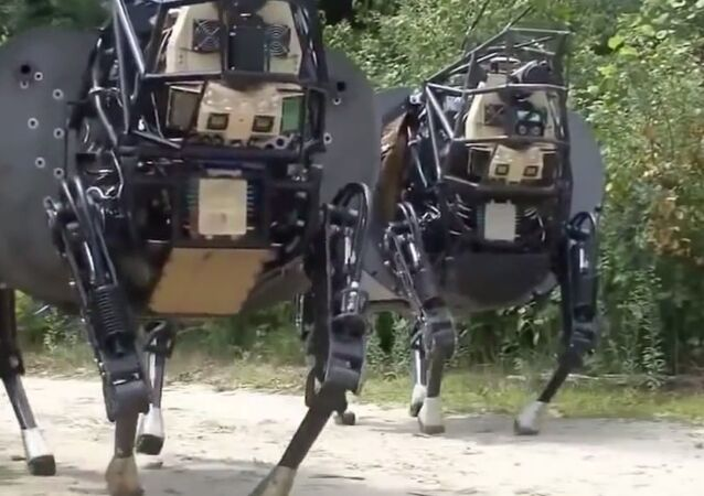 DARPA's Army of Robots