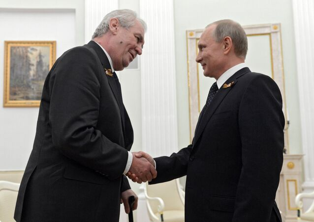 Russian President Vladimir Putin meets with President of Czech Republic Milos Zeman