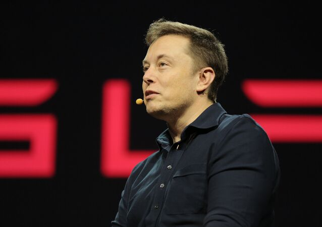 Tesla CEO Elon Musk is really really worried that his friend, Google cofounder Larry Page, has adopted some destructive interests - destructive for humanity, that is.