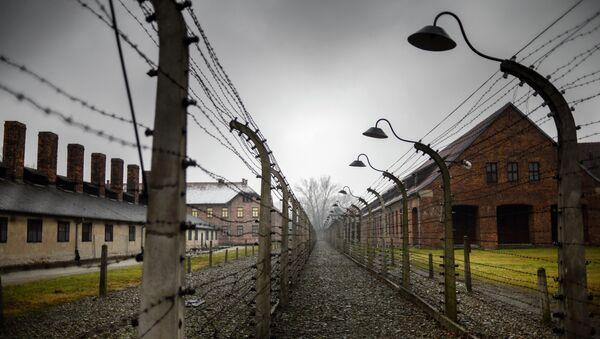 70th anniversary of Auschwitz liberation by Red Army - Sputnik International