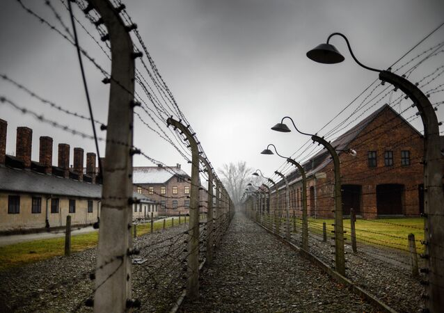 70th anniversary of Auschwitz liberation by Red Army
