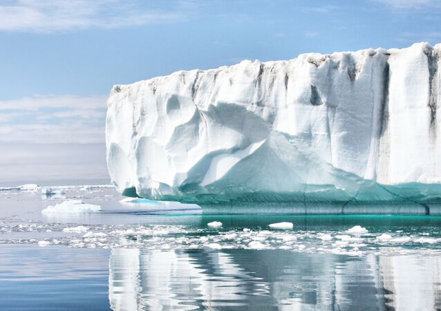 According to a NASA study, the remainder of the Larsen B Ice Shelf could break away and disintegrate by 2020.